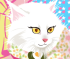 Concorso di Bellezza per Gatti