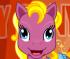 Pony da Vestire e Pettinare