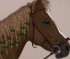 Vestire Cavalli
